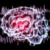 Akraba Evliliği, Epilepsi Riskini 40 Kat Artırıyor