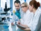 Herpes Virüsü Beyine Bile Bulaşıyor!