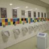 Hollanda'da Ulusal Çiş Günü: Yoğun caddelere her 500 metrede bir umumi tuvalet yapılması için çağrı...