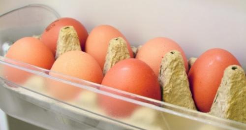 yumurta buzdolabı ile ilgili görsel sonucu