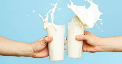 Kilo vermek için günde 2 bardak süt